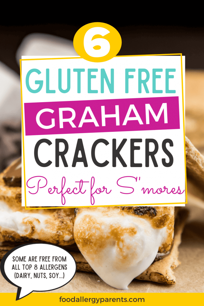 gluten-free-smores-graham-crackers-food-allergy-parents-pinterest