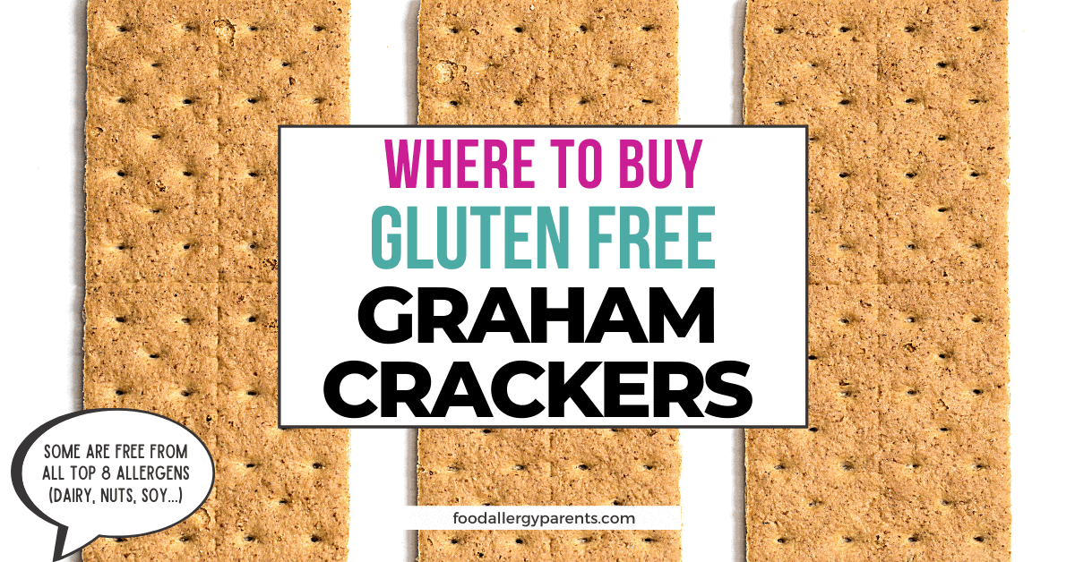 where-to-buy-gluten-free-graham-crackers-online-food-allergy-parents-featured-image
