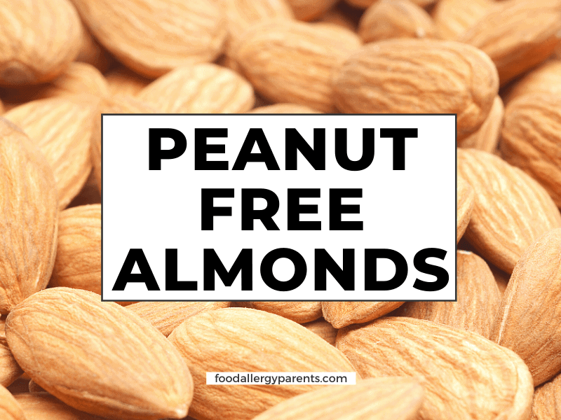 peanut-free-almonds-almond-butter-food-allergy-parents-feautred-image
